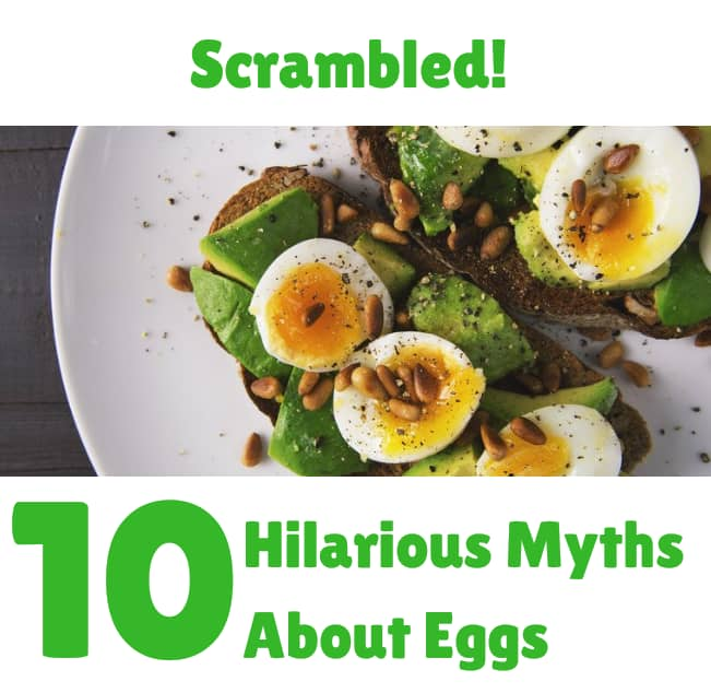 Scrambed! 10 Hilarious Myths About Eggs