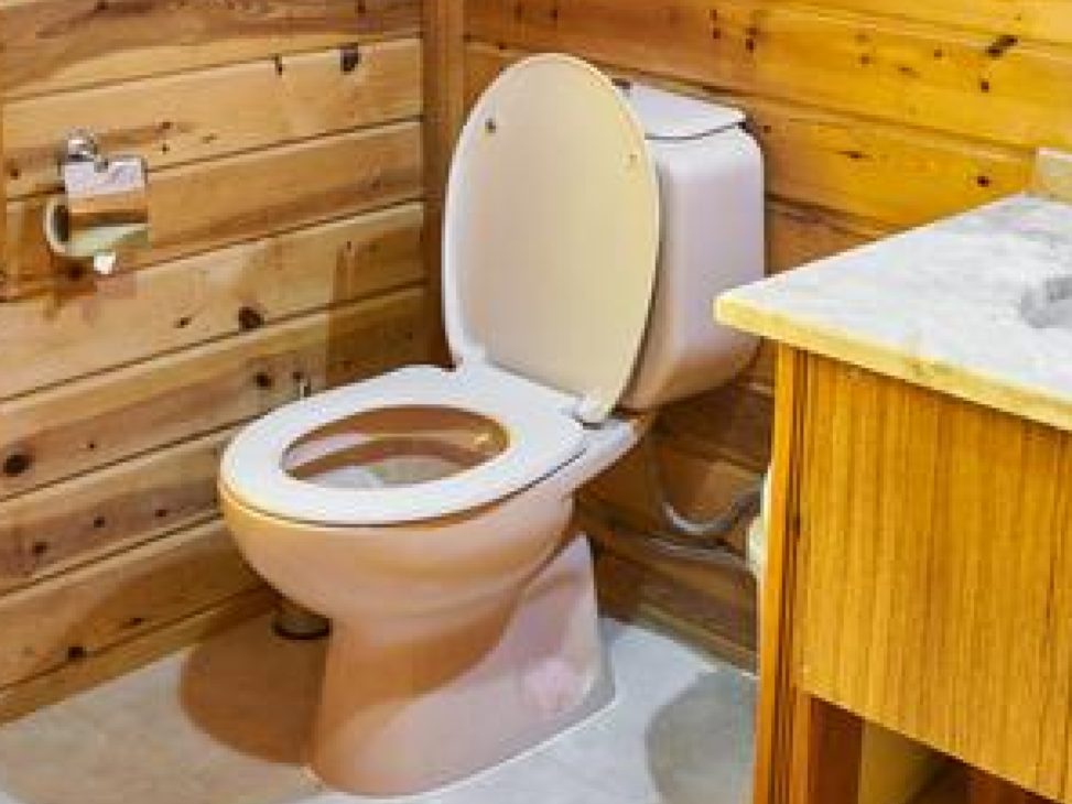 TOILET FLUSHING: HOW IT CAN MAKE YOU SICK!